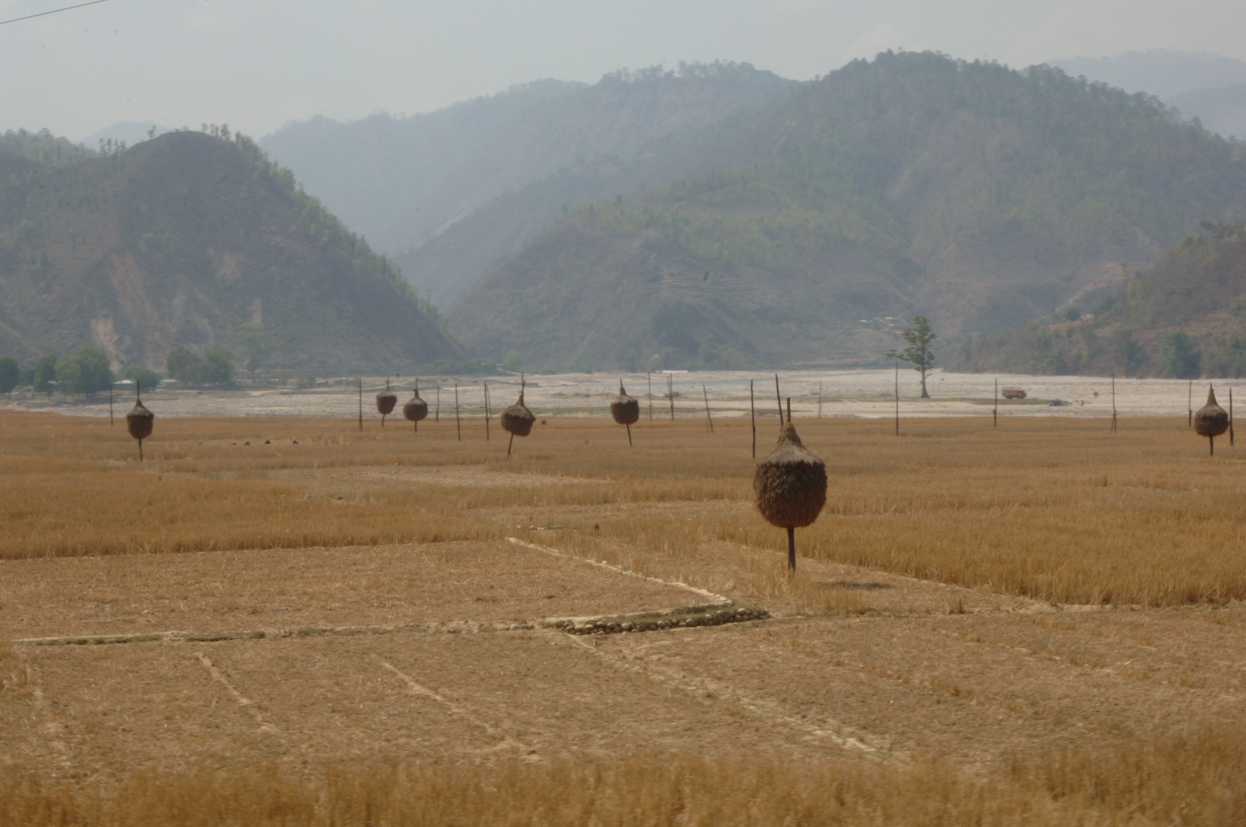 Farmed fields with harvested crops in Nepal